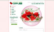 甘いいちご《紅ほっぺ》の通販 宮城県石巻市【こばやし農園】