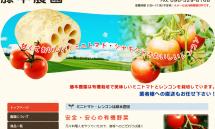 届けます!有機野菜のミニトマト・レンコン【藤本農園】 2014-10-14 17-32-06