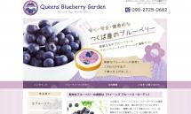 生ブルーベリーとブルーベリーアイスの通販【QueensBlueberryGarden】