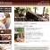 名古屋市のドッグカフェ・犬服づくり教室|celena cafe