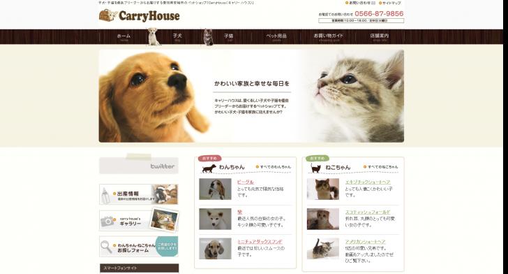 子犬・子猫を愛知の優良ブリーダーで - CARRY HOUSE