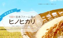 大分県産米ヒノヒカリの通販は【吉良ファーム】(1)